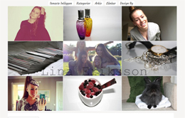 Lina Erikssons blogg