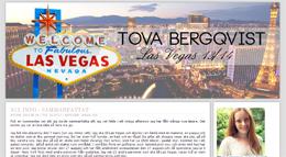 Tova Bergqvists blogg