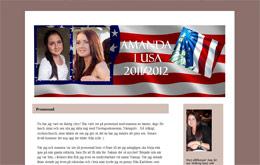 Amanda Morins blogg