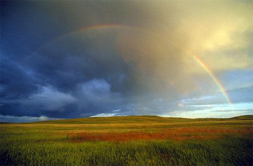 Nebraska Rainbow