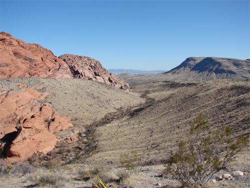 Öken i Nevada